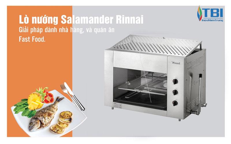 tinh-nang-cua-lo-nuong-dung-gas-rsg-35n-inoxmientrung